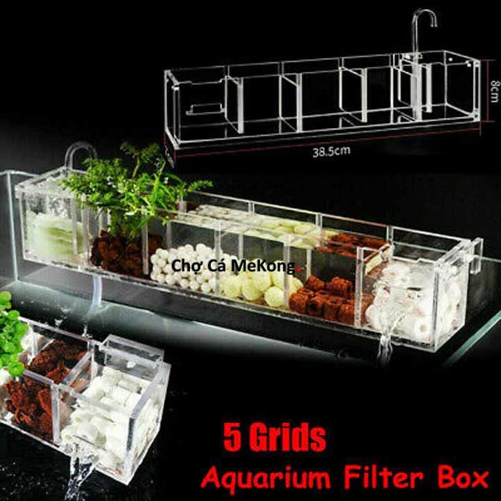 tác dụng sứ lọc nước hồ cá